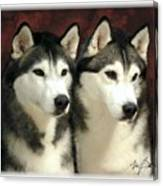 Siberian Huskies Related Canvas Print