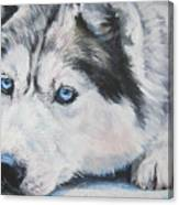 Siberian Husky Up Close Canvas Print