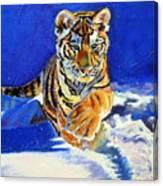 Siberian Tiger Cub Canvas Print