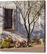 Side Area, San Xavier Del Bac Canvas Print