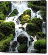 Side Of Clearwater Falls Canvas Print