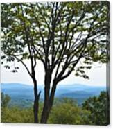 Sideling Hill Lookout  Canvas Print
