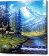 Sierra Mountain Meadow   Canvas Print