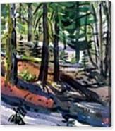 Sierra Snowdrifts Canvas Print