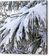 Sierra Winter Canvas Print