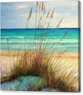 Siesta Key Beach Dunes  Canvas Print