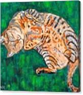 Siesta Canvas Print