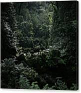 Silence Is Round Me   - Mokulehua Canvas Print