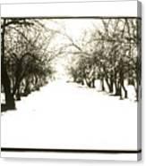 Silenced By The Snow Canvas Print