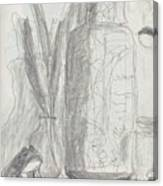Silent Frog Canvas Print