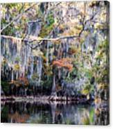 Silent Reflection Canvas Print