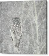 Silent Snowfall Portrait II Canvas Print