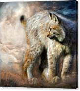 Silent Spirit Canvas Print