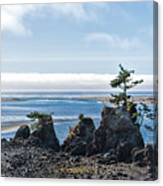 Siletz Bay Canvas Print