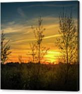 Silhouette By Sunset Canvas Print