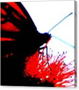 Silhouette Monarch With Red Canvas Print