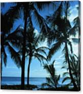 Silhouette Of Palms Canvas Print
