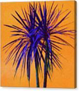 Silhouette On Orange Canvas Print