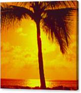 Silhouetted Palm Canvas Print