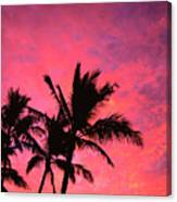 Silhouetted Palms Canvas Print
