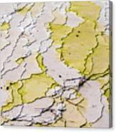 Silica Terraces Canvas Print