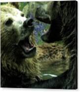 Silly Bears Canvas Print