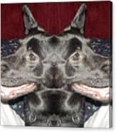 Silly Dog Canvas Print