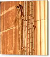 Silo Ladder Canvas Print