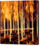 Silver Birches Flaming Abstract  Canvas Print