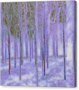 Silver Birch Magical Abstract  Canvas Print