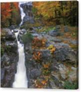 Silver Cascade In Autumn Canvas Print