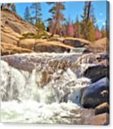 Silver Creek Rapid Canvas Print
