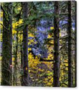 Silver Falls State Park Oregon 2 Canvas Print