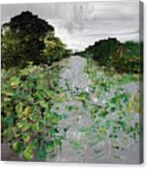 Silver Lake Norfolk Botanical Garden 2018-17 Canvas Print