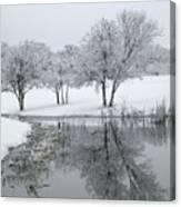 Silver Morn Canvas Print