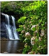 Silver Run Falls Mountain Laurel Canvas Print
