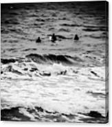 Silver Surfers Canvas Print