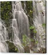 Silverdale Falls 2 Canvas Print