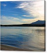 Silvery Reflection Canvas Print