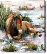 Simba Ngoro Ngoro Canvas Print