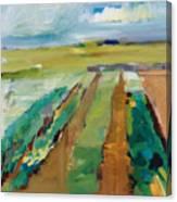 Simple Fields Canvas Print