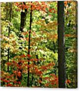 Simply Autumn Canvas Print