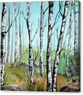 Simply Birches Canvas Print