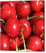 Simply Cherries  Canvas Print