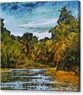 Sinamaica Lake - Venezuela Canvas Print