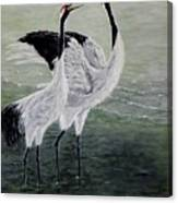 Singing Cranes Canvas Print