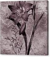 Single Lily-vintage Series  Canvas Print