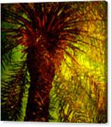 Single Palm Canvas Print