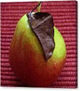 Single Pear Too Canvas Print