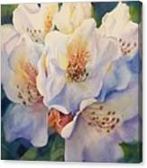 Single Trusse Canvas Print